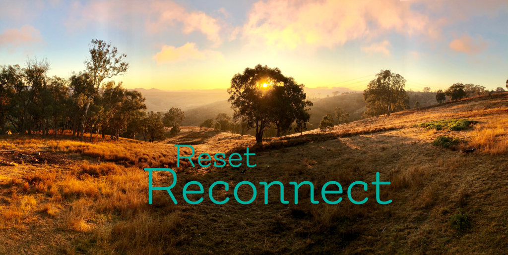 Reset and Reconnect